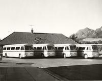 Denver Boulder Bus Company Buses Photo 2